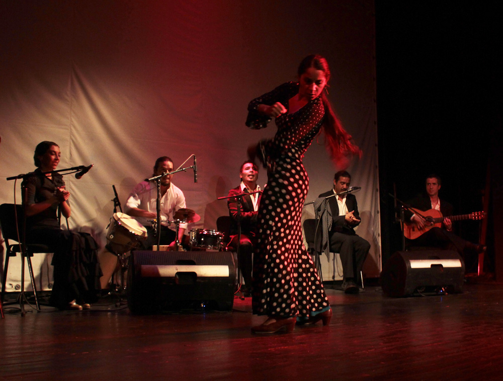c2013_flamencoch